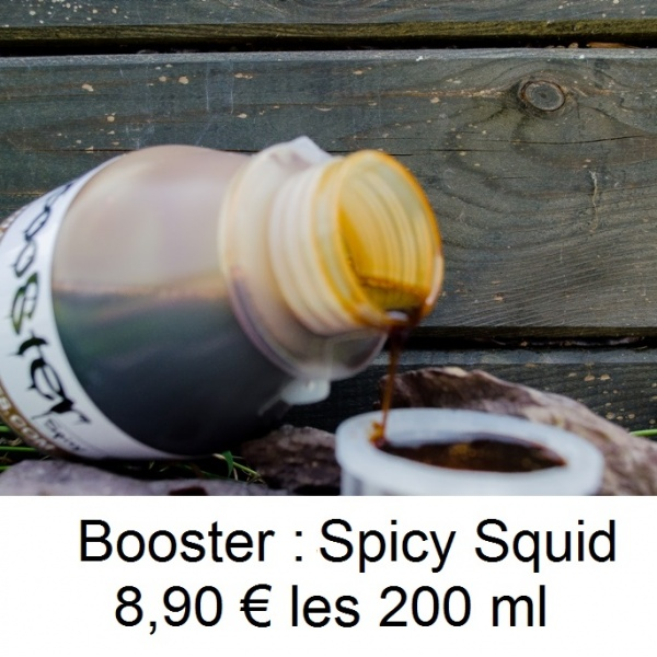 booster spicy squid