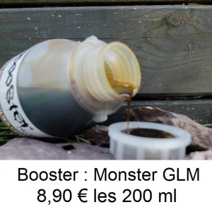 booster GLM